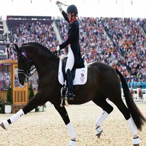KWPN Dutch warmblood horses dominate on Olympic games (London 2012). (Part 1)