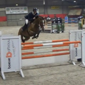 Great jumping horse, Heldia